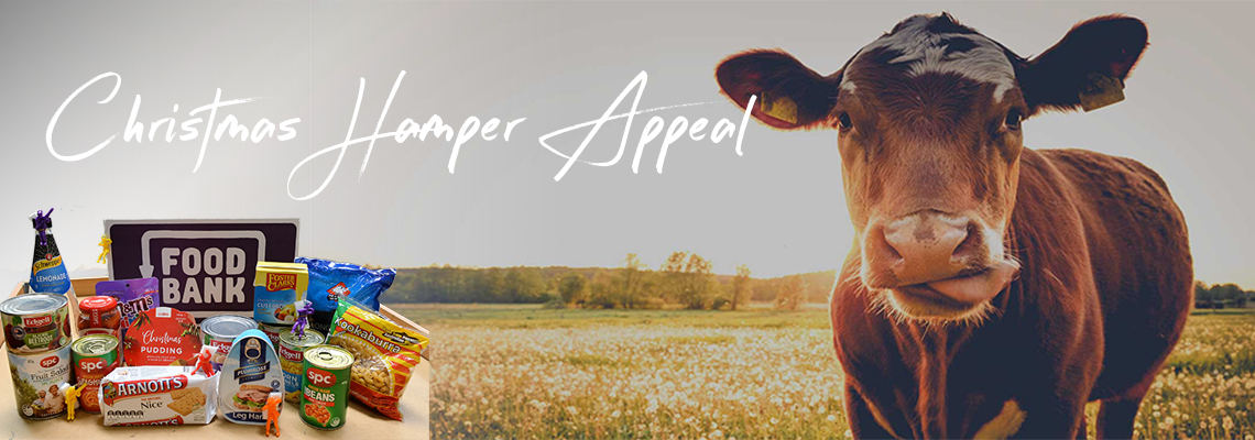 hamperappeal Hero Image