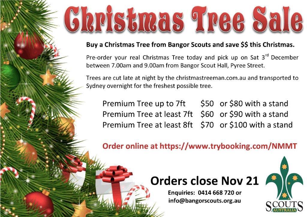 1st Bangor 2017 Christmas Tree Sale Trybooking Au